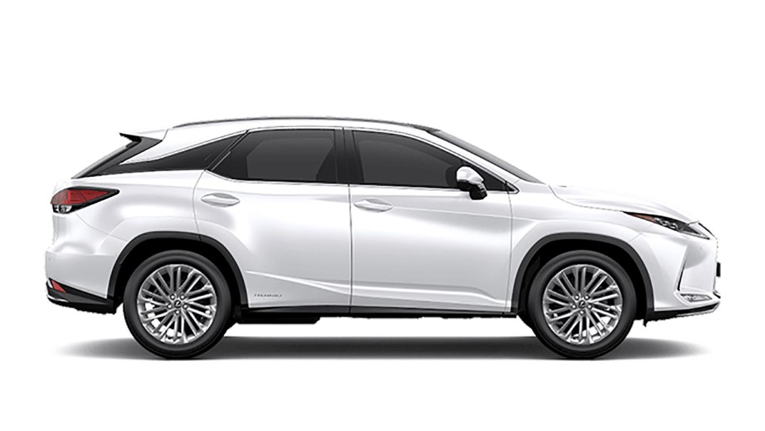 Lexus RX 2020 Others 001