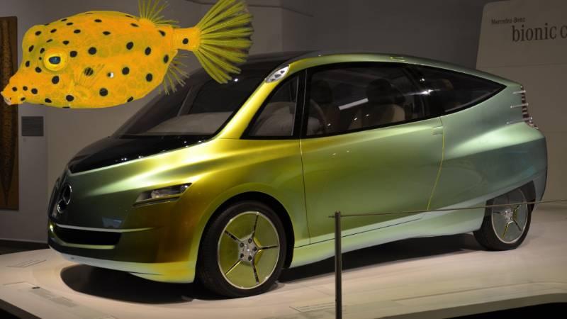Top 5 รถที่นักออกแบบยอมรับ ว่าเลียนแบบมาจากสัตว์ บางคันประหลาดสุดเท่าที่เราเคยเห็นมา 02
